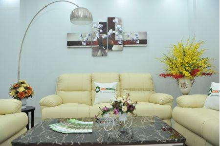 Bộ bàn ghế sofa da bò tót nhập khẩu mã tq06-7