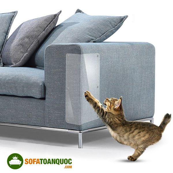 chọn sofa cho nhà có thú cưng