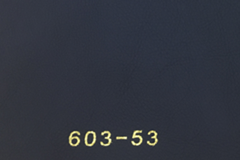 Quyển GAUR SKIN Mã SDGS07