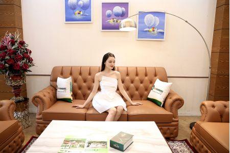 Bộ sofa tân cổ điển 1+1+2 mã m21