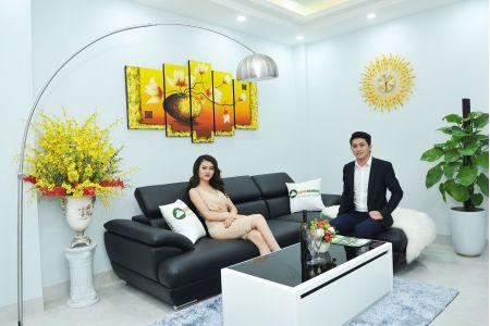 Bộ bàn ghế sofa cho phòng khách nhỏ mã TN01T