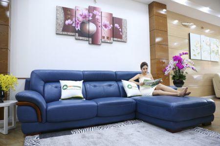 Bộ bàn ghế sofa da màu xanh mã sdn25t-1
