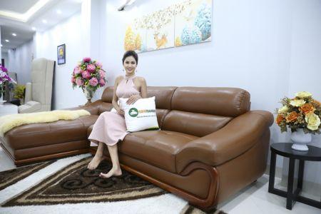 bộ ghế sofa da cao cấp nhập khẩu mã sdn19p-1